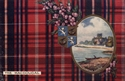 Picture of Clan Table Mats - MacDougal